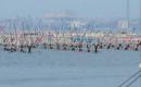 Taranto Sea thumbnail image